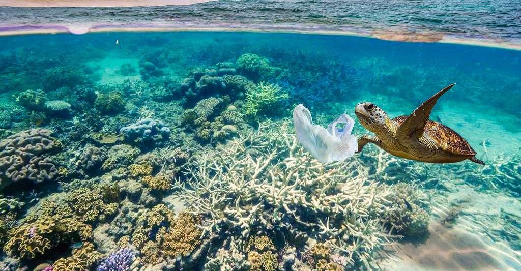 Accord pour la réduction de la pollution de l'environnement liée aux plastiques