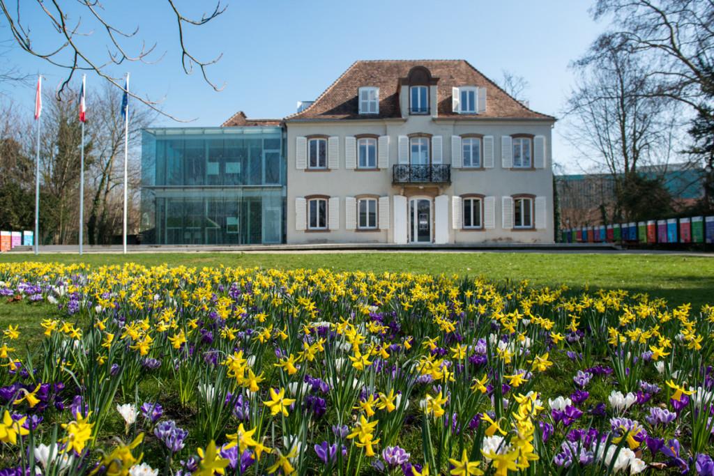 La rentrée de l'information européenne pour les scolaires avec le CIIE de Strasbourg