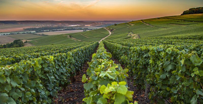 Plus de 300 millions d'euros d'investissements européens en Champagne-Ardenne entre [...]