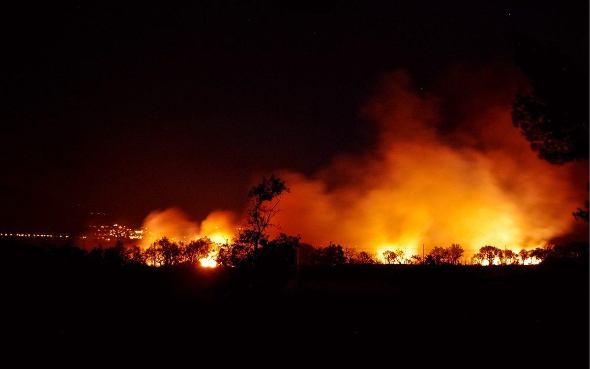 L'UE face aux flammes